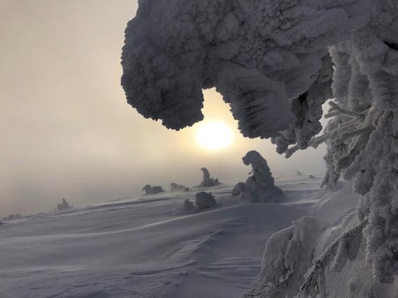 Sněžní ještěři na vrcholcích...