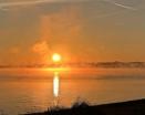Mushow Morning Sun