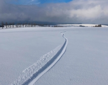 BACKCOUNTRY SNOWKITING - jak na to?