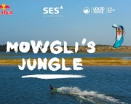 Mowgli's Jungle - Christophe Tack