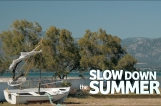 SLOW DOWN THE SUMER